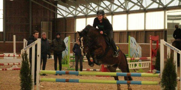 Springlehrgang mit Stephan Hieck – Pferdewitschaftsmeister aus Warendorf